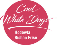 Cool White Dogs